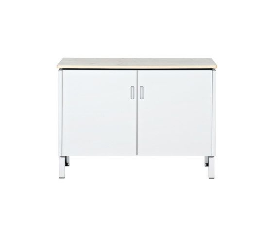 https://res.cloudinary.com/clippings/image/upload/t_big/dpr_auto,f_auto,w_auto/v1/product_bases/made-in-the-workshop-sheet-cabinet-s-by-lensvelt-lensvelt-piet-hein-eek-clippings-5473322.jpg