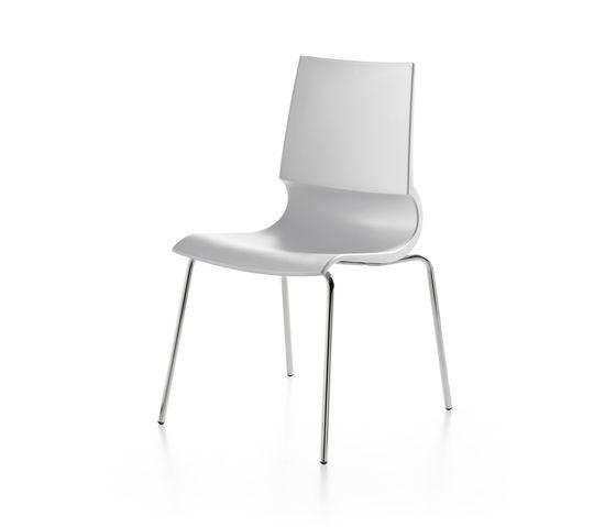 Ricciolina 4 legs polypropylene by Maxdesign by Maxdesign