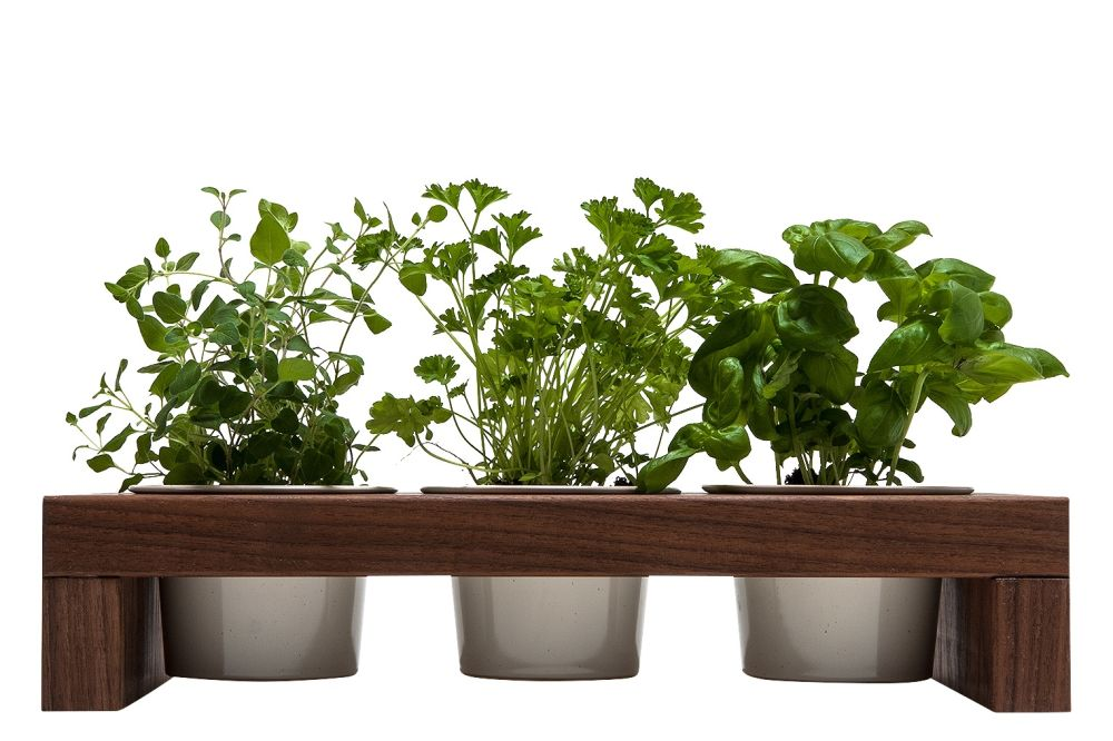 Spiceboard Three Planter by Urbanature