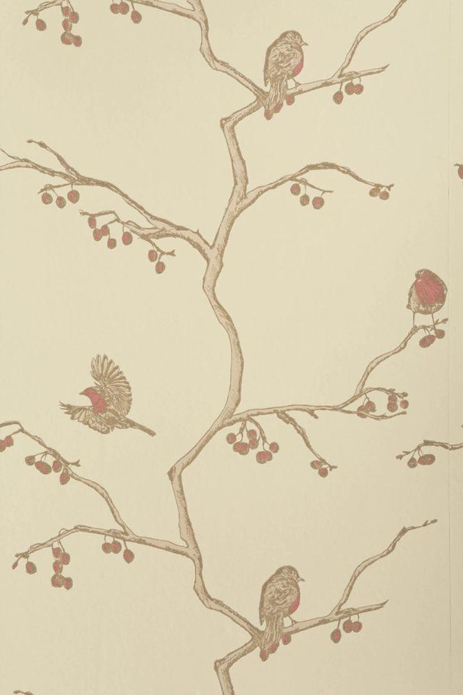 The English Robin Wallpaper  by Barneby Gates