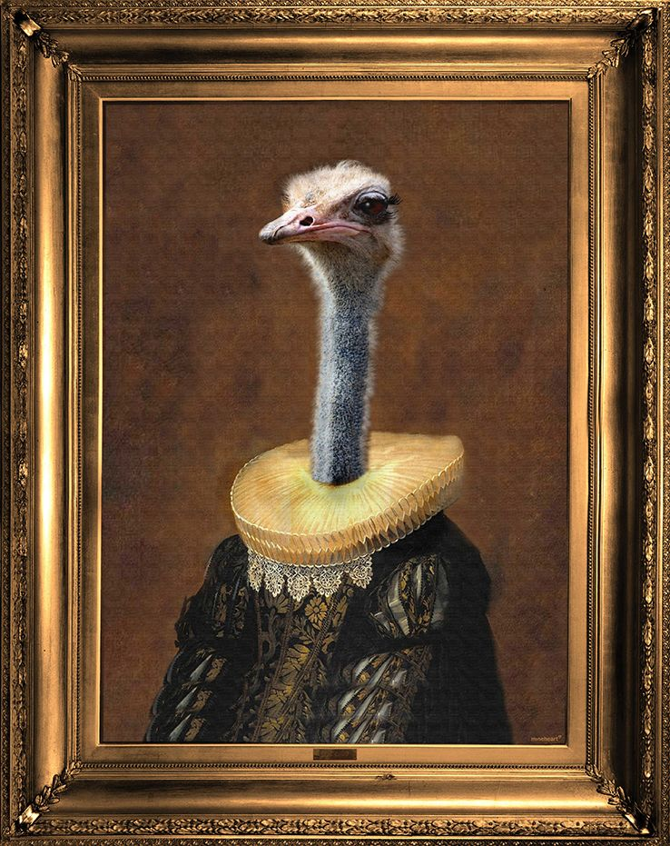 'Senora Emanuela' Canvas,Mineheart,Prints & Artwork,art,flightless bird,ostrich,painting,picture frame,ratite,visual arts