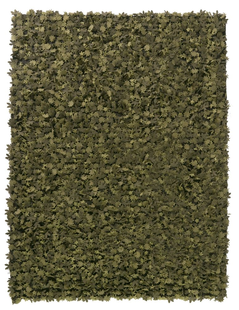 https://res.cloudinary.com/clippings/image/upload/t_big/dpr_auto,f_auto,w_auto/v1492702545/products/little-field-of-flowers-rug-green-80-x-140-cm-nanimarquina-design-by-studio-tord-boontje-clippings-8884031.jpg