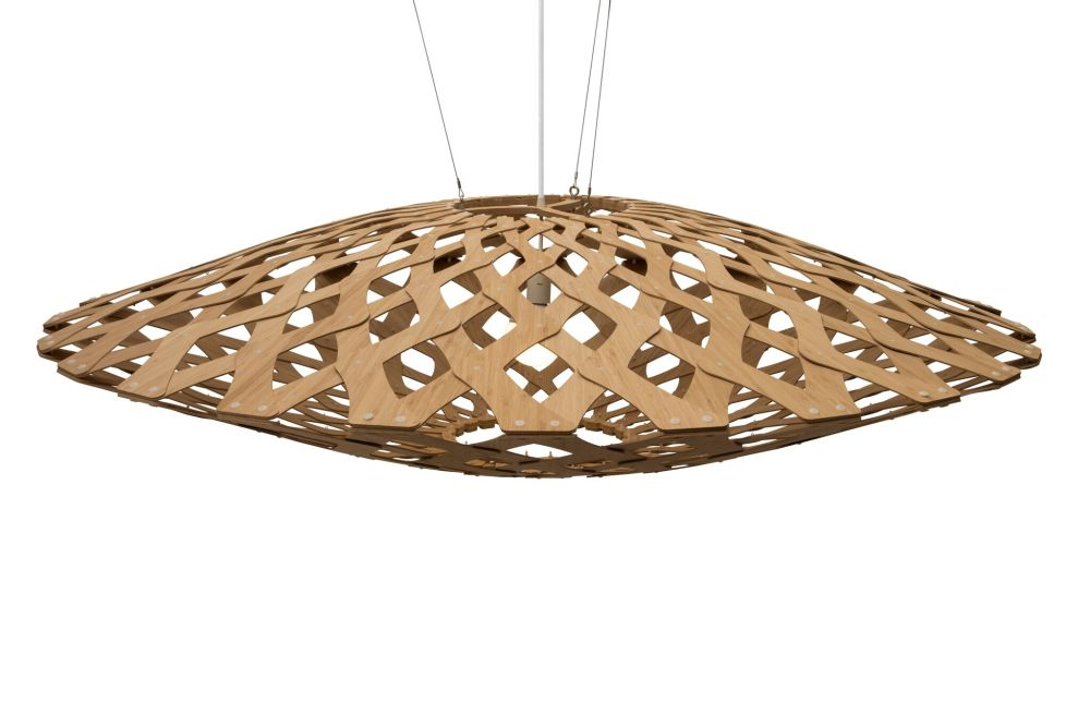 https://res.cloudinary.com/clippings/image/upload/t_big/dpr_auto,f_auto,w_auto/v1506576774/products/flax-pendant-light-david-trubridge-clippings-9496221.jpg