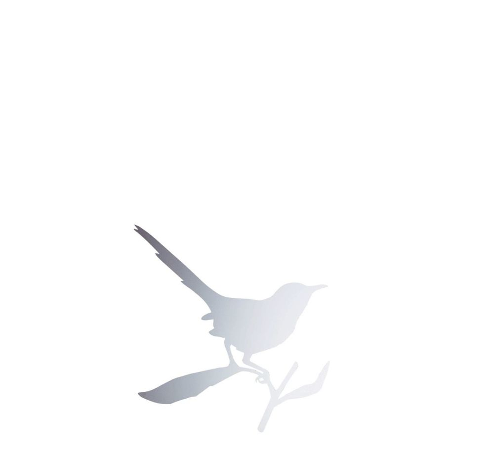 Polished Stainless Steel,Driade,Mirrors,beak,bird,white,wing