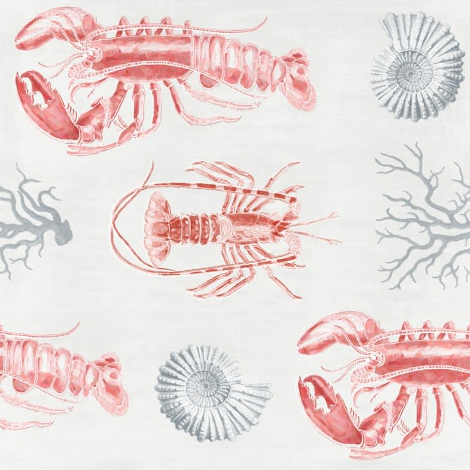 Mind The Gap,Wallpapers,crustacean,decapoda,lobster,organism