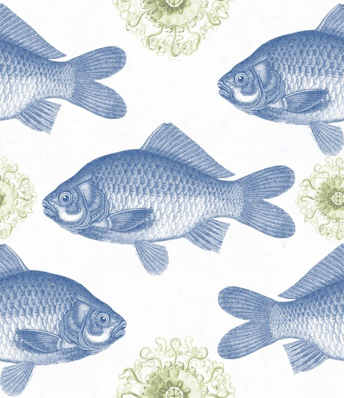 https://res.cloudinary.com/clippings/image/upload/t_big/dpr_auto,f_auto,w_auto/v1512983070/products/fish-blue-wallpaper-mind-the-gap-clippings-9742201.jpg
