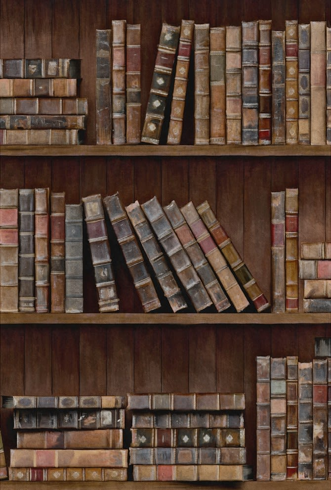 Book Shelves Wallpaper by Mind The Gap