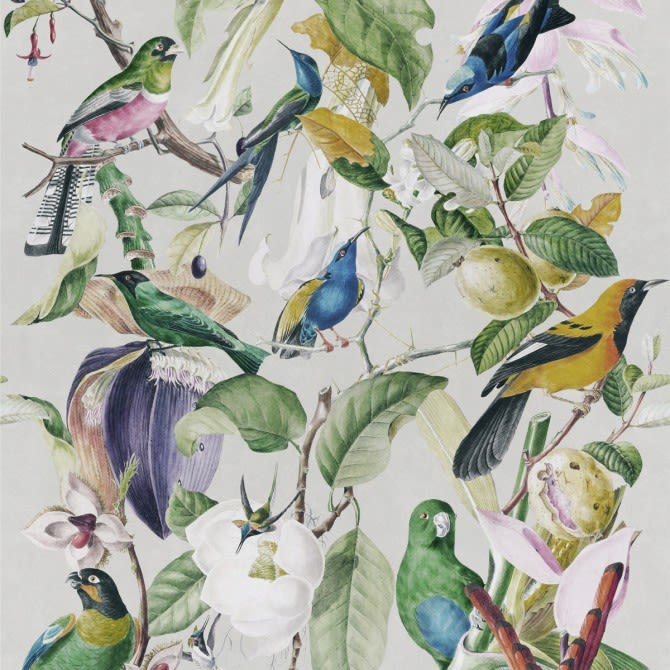 Tropical Birds Wallpaper by Mind The Gap