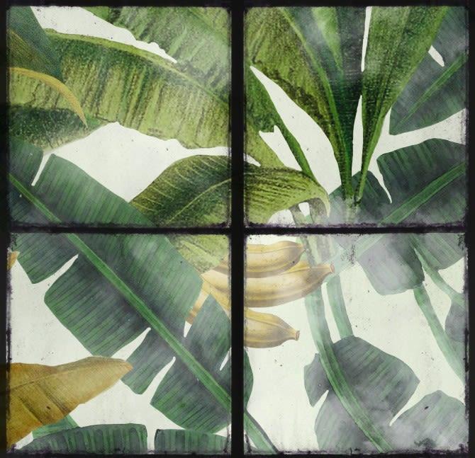 Mind The Gap,Wallpapers,banana leaf,botany,design,green,leaf,line,organism,pattern,plant,tree