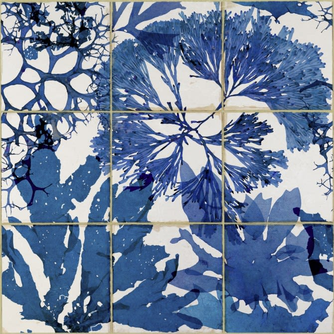 Mind The Gap,Wallpapers,blue,blue and white porcelain,botany,branch,design,leaf,pattern,plant,printmaking,tree