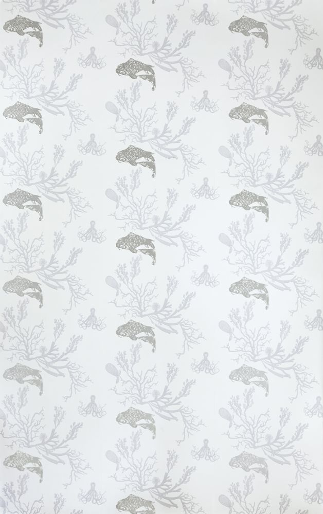 Coral Wallpaper  by Barneby Gates