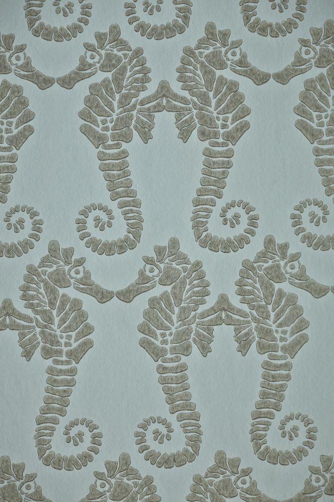 Seahorse Wallpaper  by Barneby Gates