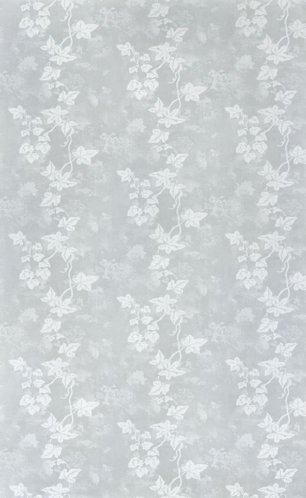 Ivy Wallpaper by Barneby Gates