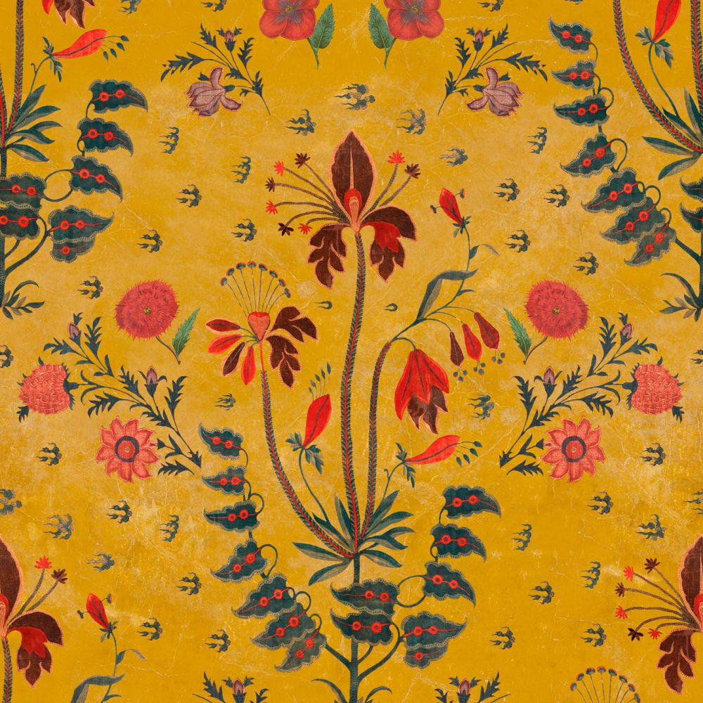 Ochre,Mind The Gap,Wallpapers,botany,floral design,pattern,pedicel,plant,textile,visual arts,wallpaper,wildflower,wrapping paper,yellow