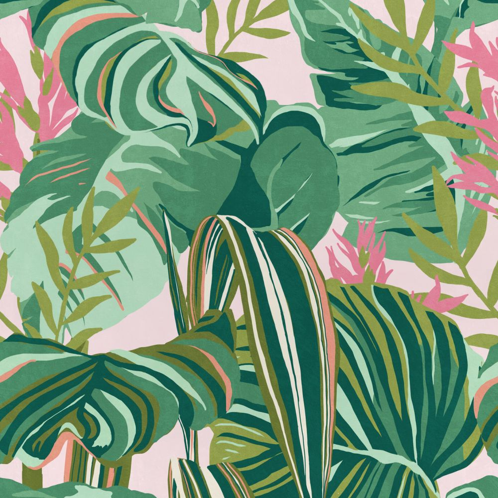 Anthracite,Mind The Gap,Wallpapers,arrowroot family,botany,design,flower,leaf,pattern,plant