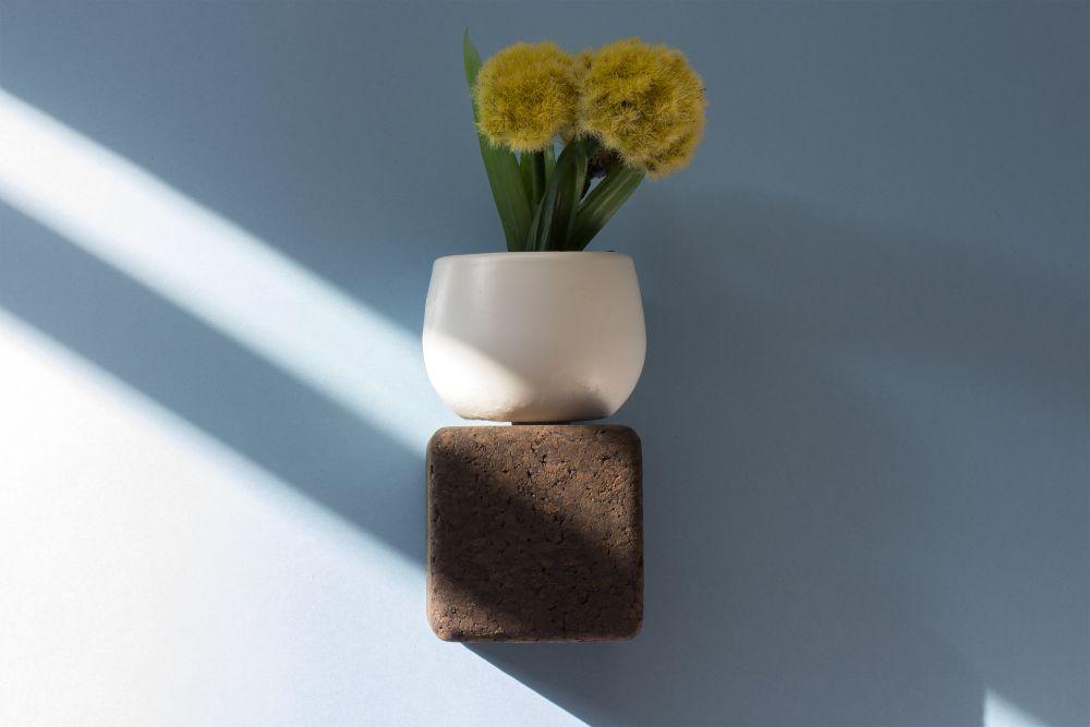 flower,flowerpot,plant,vase