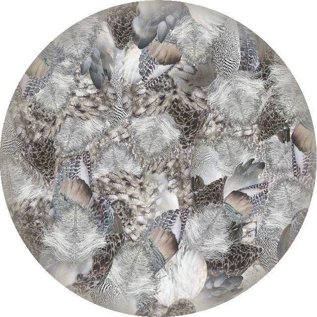 250 cm, Poliamide,Moooi Carpets,Rugs,dishware,leaf,plate,tableware