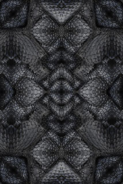 300x200 cm Polyamide,Moooi Carpets,Rugs,black,design,monochrome,pattern,symmetry