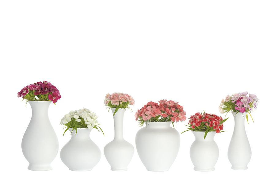 https://res.cloudinary.com/clippings/image/upload/t_big/dpr_auto,f_auto,w_auto/v1544099703/products/blossom-vases-set-of-6-sch%C3%B6nbuch-apartment-8-clippings-11126520.jpg