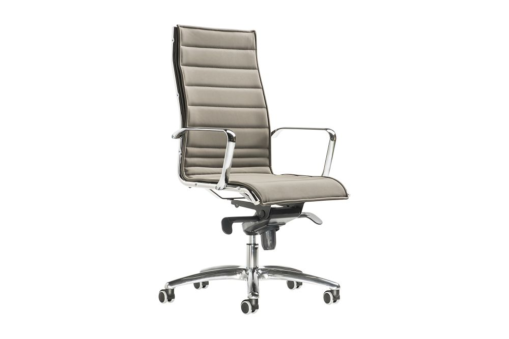 https://res.cloudinary.com/clippings/image/upload/t_big/dpr_auto,f_auto,w_auto/v1545034877/products/auckland-chair-high-backrest-on-castors-diemme-clippings-11129680.jpg