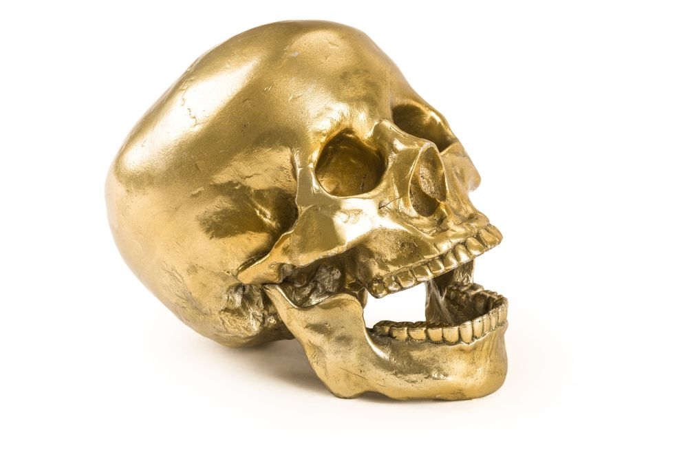 https://res.cloudinary.com/clippings/image/upload/t_big/dpr_auto,f_auto,w_auto/v1545231955/products/human-skull-ornament-seletti-diesel-living-with-seletti-clippings-11130921.jpg