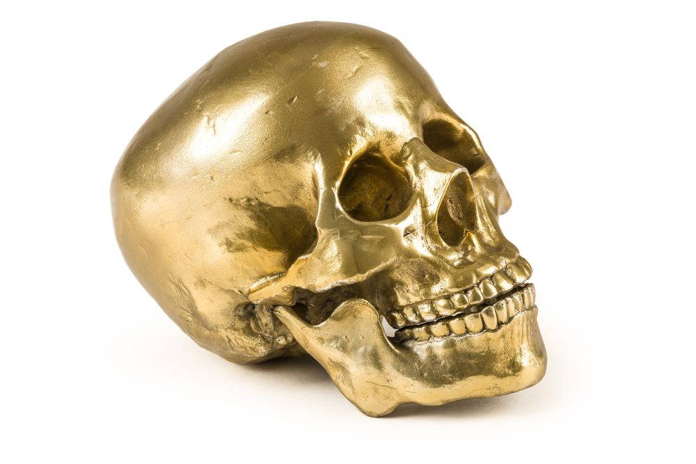 https://res.cloudinary.com/clippings/image/upload/t_big/dpr_auto,f_auto,w_auto/v1545231958/products/human-skull-ornament-seletti-diesel-living-with-seletti-clippings-11130922.jpg