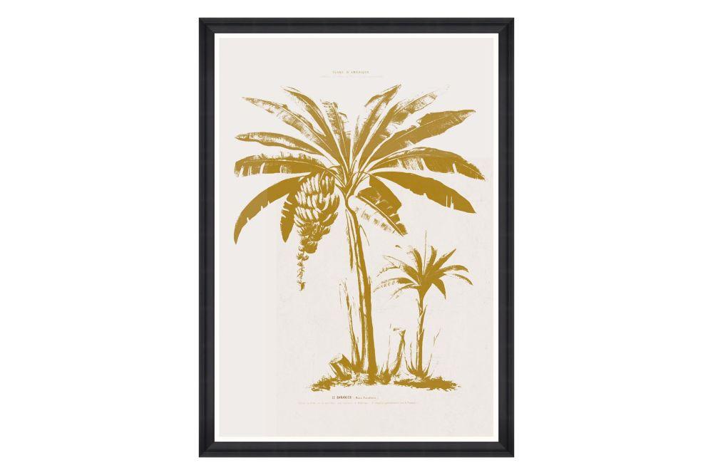 Mind The Gap,Prints & Artwork,arecales,botany,leaf,palm tree,plant,tree