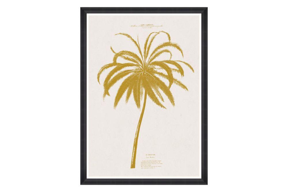 Mind The Gap,Prints & Artwork,botany,leaf,plant,tree,yellow