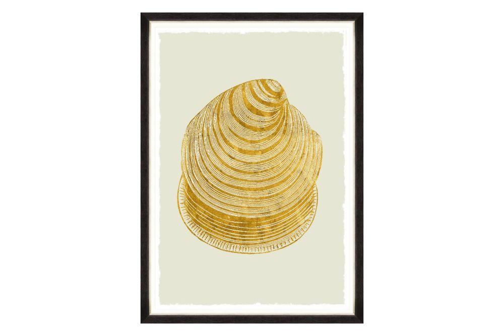 Mind The Gap,Prints & Artwork,bivalve,food