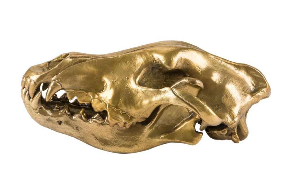 https://res.cloudinary.com/clippings/image/upload/t_big/dpr_auto,f_auto,w_auto/v1546414954/products/wolf-skull-ornament-seletti-diesel-living-with-seletti-clippings-11131702.jpg