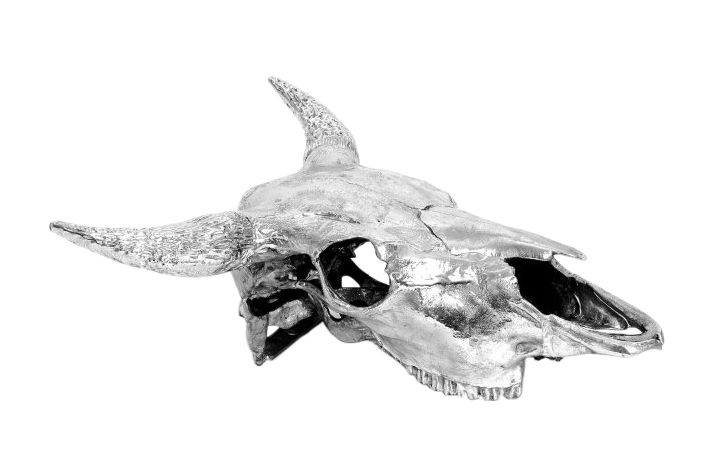 Bison Skull Ornament by Seletti