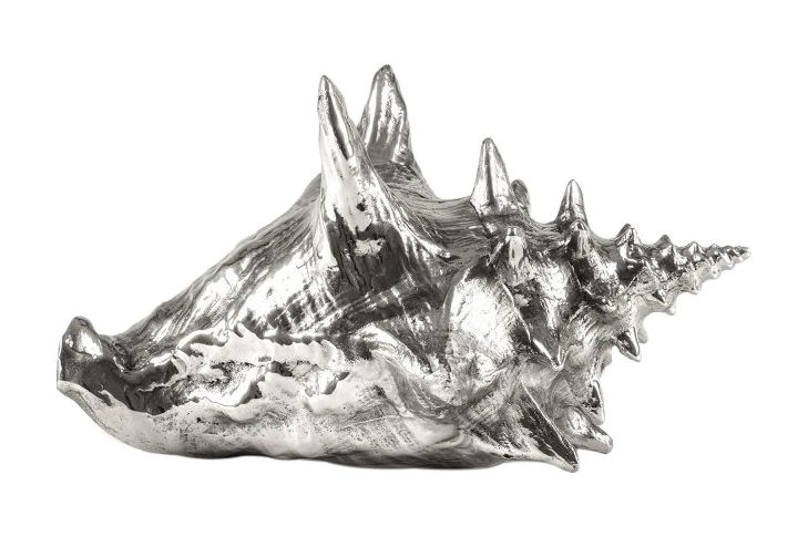 Seletti,Decorative Accessories,conch,drawing,jaw,rhinoceros,skull