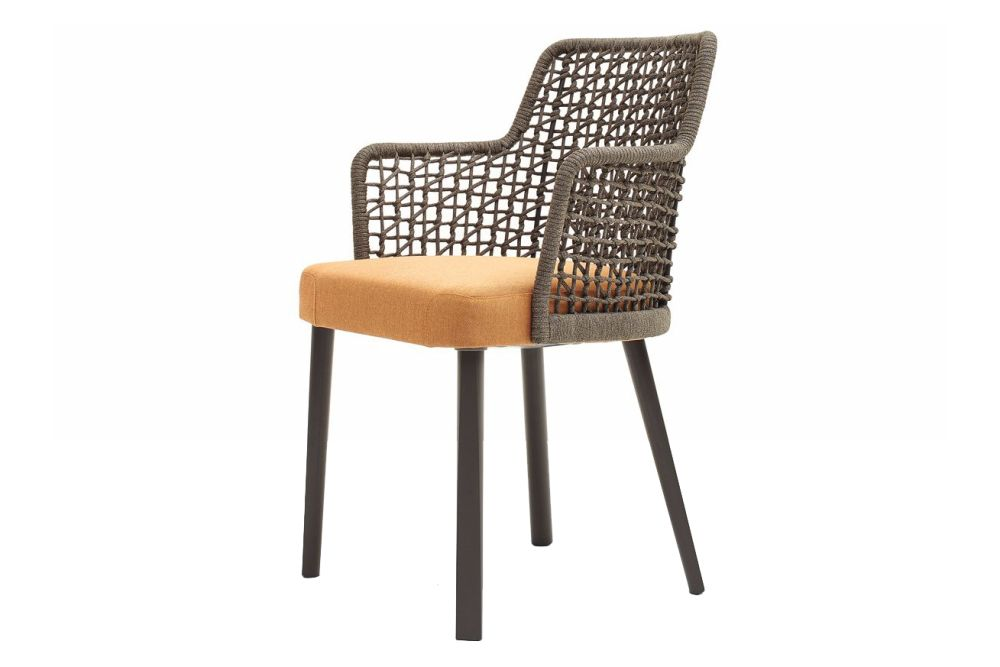 https://res.cloudinary.com/clippings/image/upload/t_big/dpr_auto,f_auto,w_auto/v1556033549/products/emma-armchair-upholstered-seat-synthetic-backrest-236p4-iroko-cat-c-varaschin-monica-armani-clippings-11190788.jpg