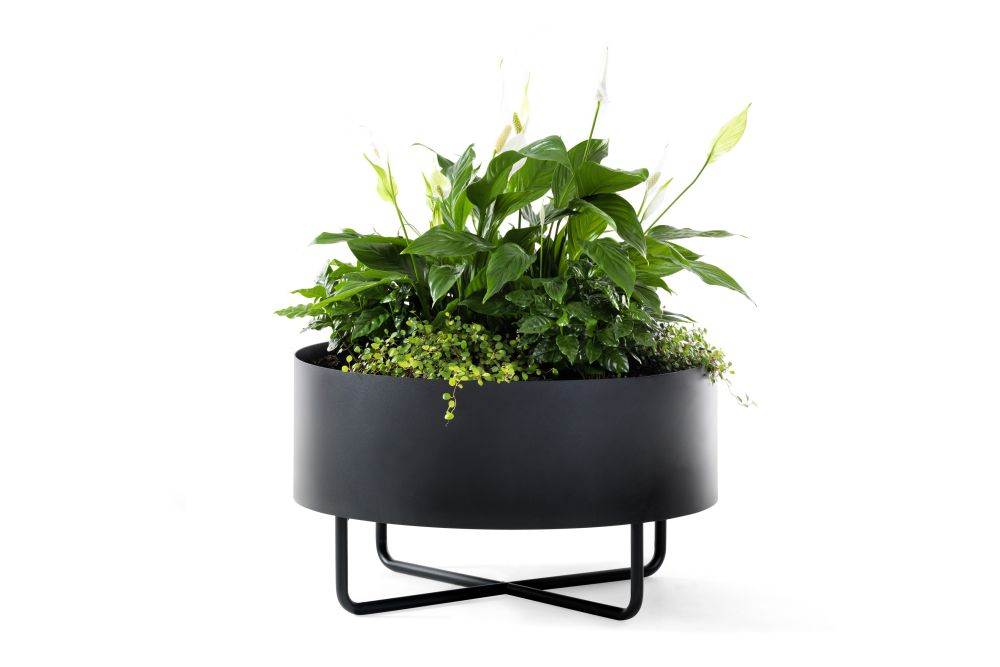 https://res.cloudinary.com/clippings/image/upload/t_big/dpr_auto,f_auto,w_auto/v1558937646/products/shima-garden-johanson-b%C3%B6ttcher-kayser-clippings-11212687.jpg