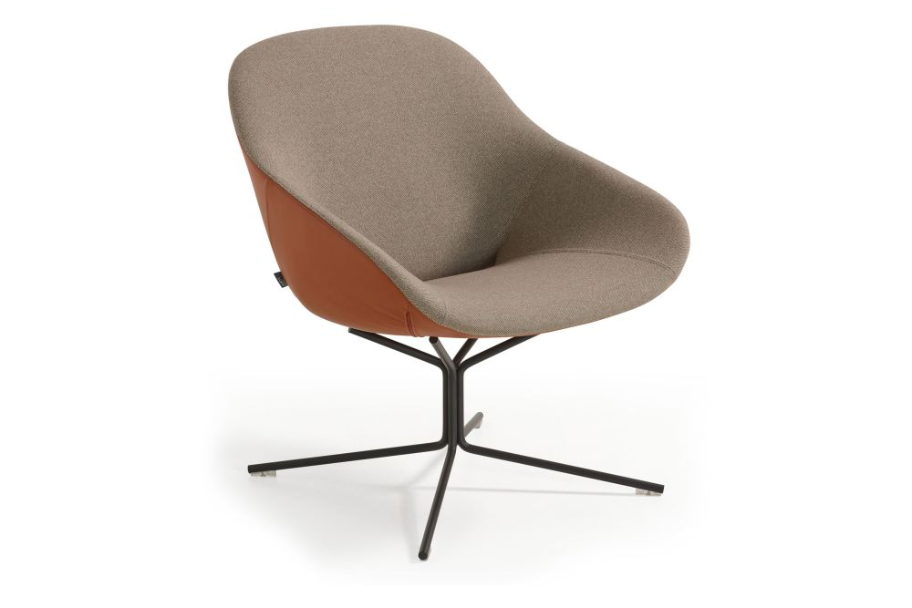 https://res.cloudinary.com/clippings/image/upload/t_big/dpr_auto,f_auto,w_auto/v1568334393/products/beso-4-star-non-swivel-base-lounge-armchair-artifort-khodi-feiz-clippings-11300968.jpg