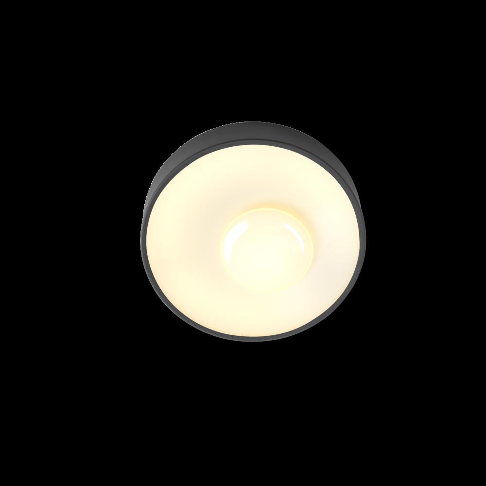 Piola - Graphite, 60 cm, DALI,Marset,Ceiling Lights