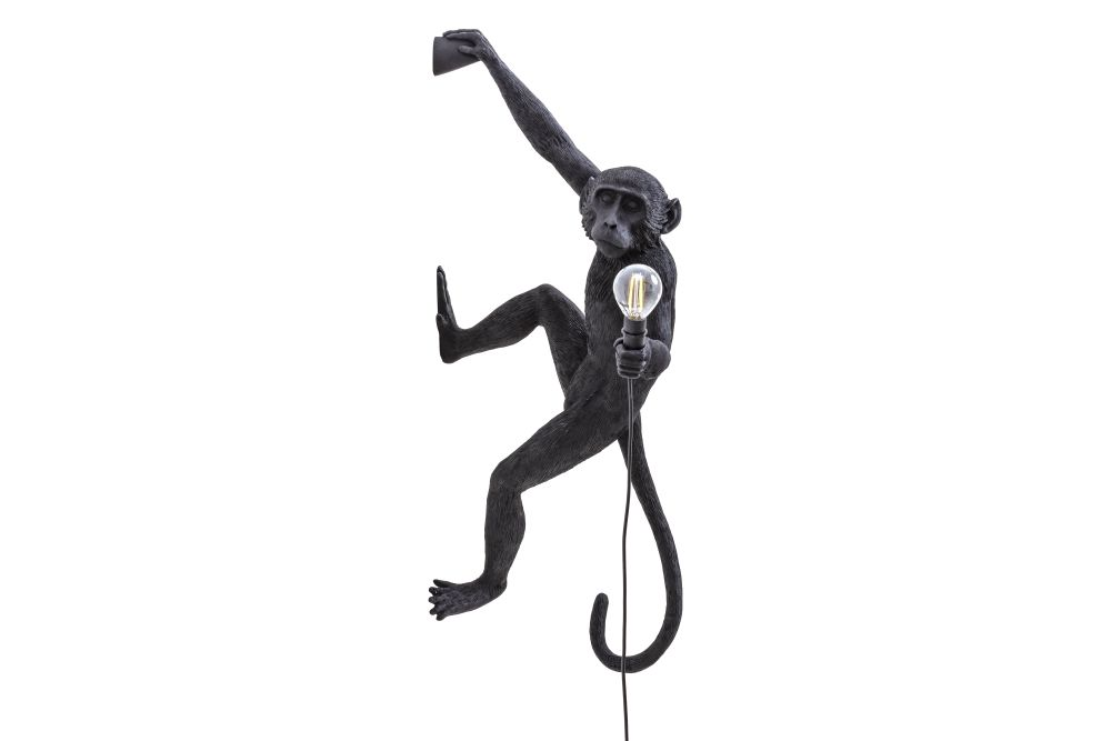 https://res.cloudinary.com/clippings/image/upload/t_big/dpr_auto,f_auto,w_auto/v1599636522/products/hanging-right-hand-monkey-indooroutdoor-wall-light-seletti-marcantonio-clippings-11445533.jpg