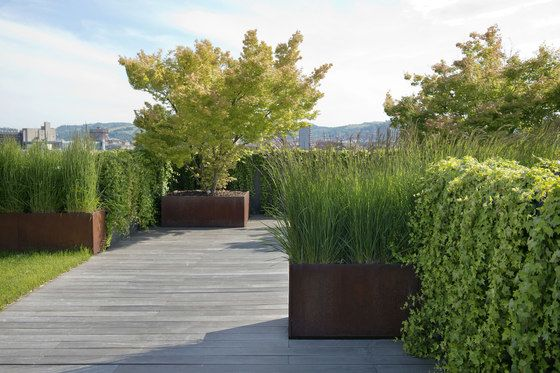 De Castelli,Plant Pots,garden,grass,grass family,landscape,landscaping,natural landscape,plant,property,real estate,shrub,thuya,tree,walkway,woody plant
