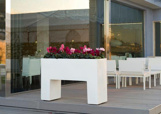 flower,flowerpot,furniture,house,interior design,plant,property,room,table