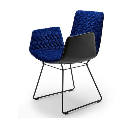 Freifrau Sitzmöbelmanufaktur,Dining Chairs,chair,cobalt blue,electric blue,furniture