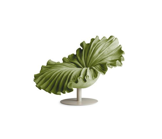 Kenneth Cobonpue,Lounge Chairs,botany,flower,houseplant,leaf,monstera deliciosa,plant