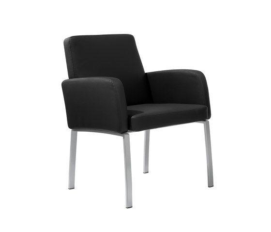 Stechert Stahlrohrmöbel,Lounge Chairs,black,chair,furniture,line