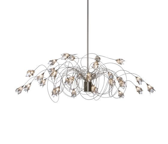 HARCO LOOR,Pendant Lights,ceiling,ceiling fixture,chandelier,leaf,light fixture,lighting,lighting accessory