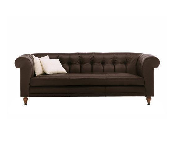 De Padova,Sofas,brown,couch,furniture,leather,loveseat,sofa bed,studio couch