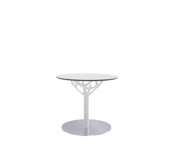 Caimi Brevetti,Coffee & Side Tables,cake stand,coffee table,end table,furniture,glass,table