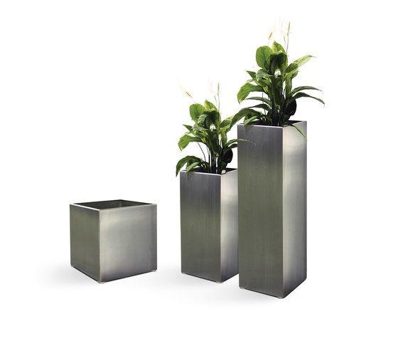 FueraDentro,Plant Pots,flowerpot,houseplant,plant,vase