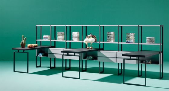 LAGRAMA,Bookcases & Shelves,furniture,green,room,table,turquoise