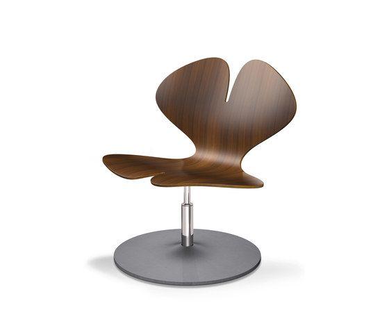 Klöber,Lounge Chairs,furniture,leaf,table