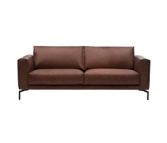 Linteloo,Sofas,brown,couch,furniture,leather,loveseat,outdoor sofa,sofa bed,studio couch