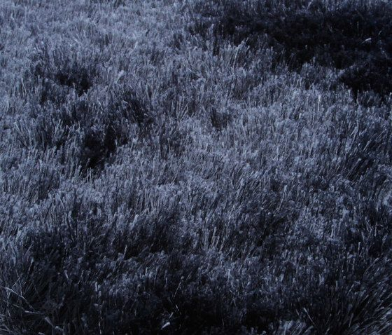 black,blue,freezing,frost,grass